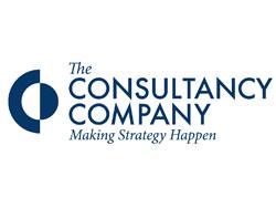The Consultancy Company